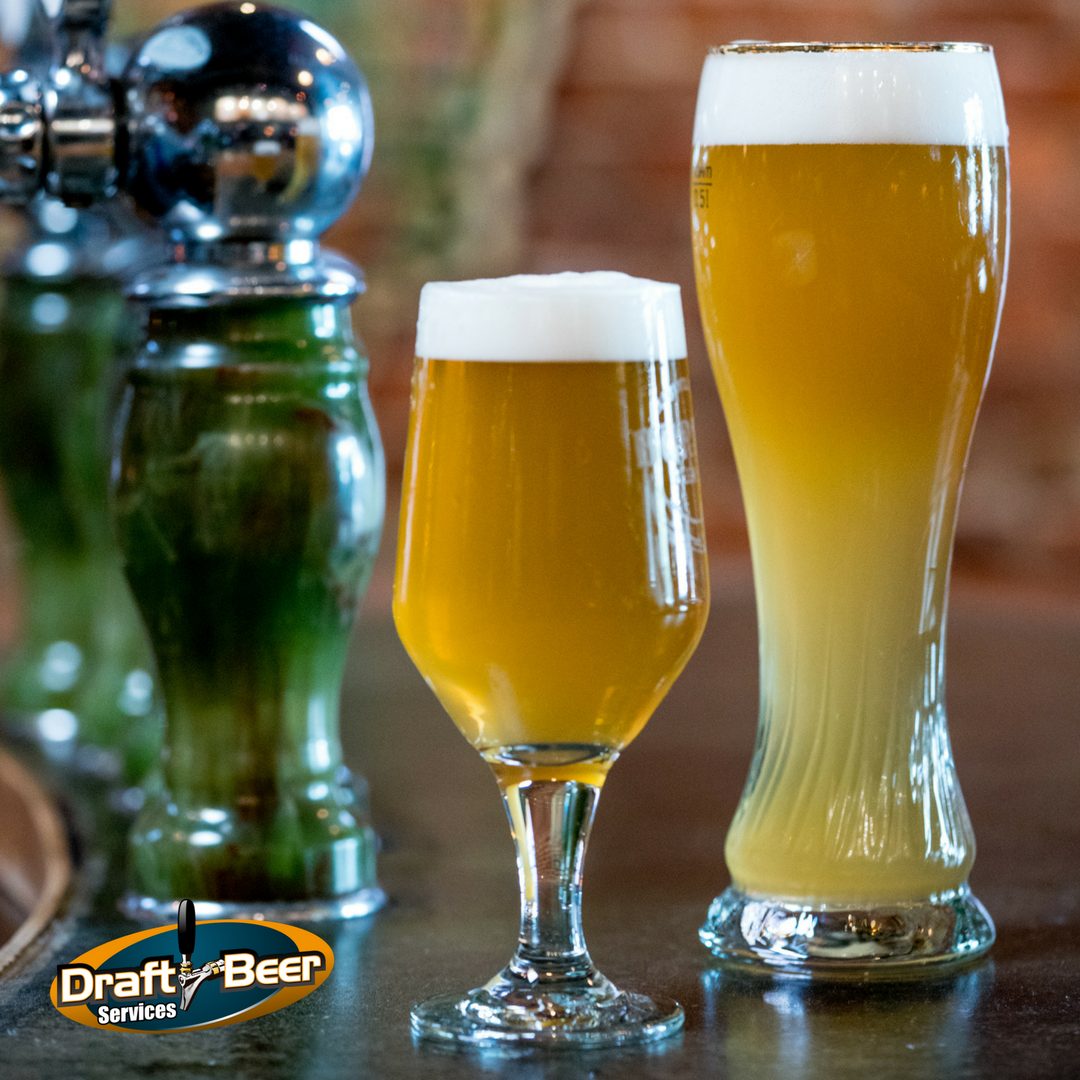 Does the Shape of Your Beer Glass Matter?